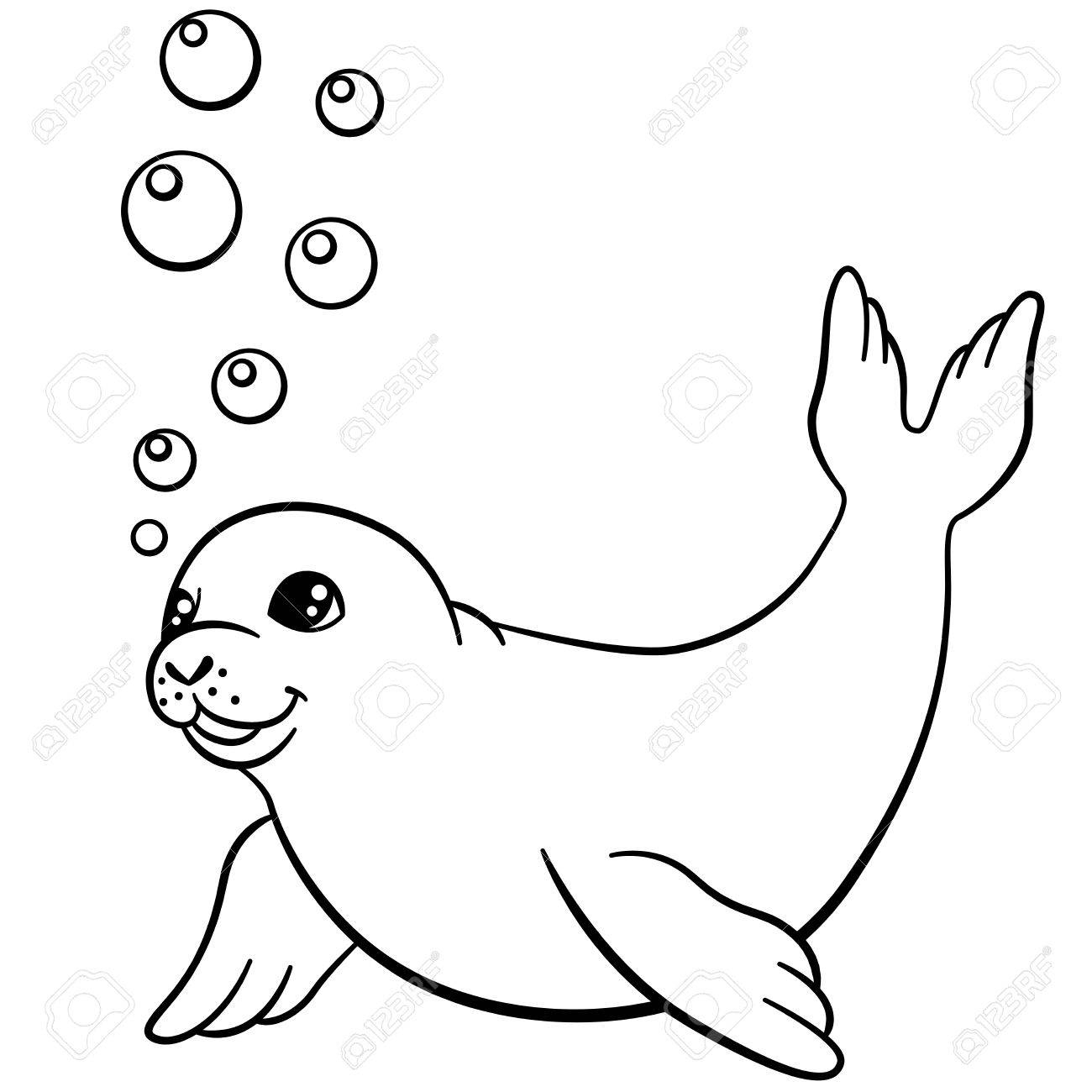 1300x1300 seal cartoon drawing and seal cartoon drawing baby seal drawing