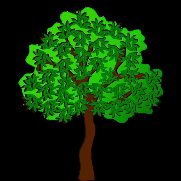 750x750 Summer Season Tree Autumn Drawing Cc0