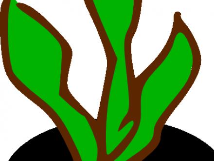 Seaweed Underwater Drawing