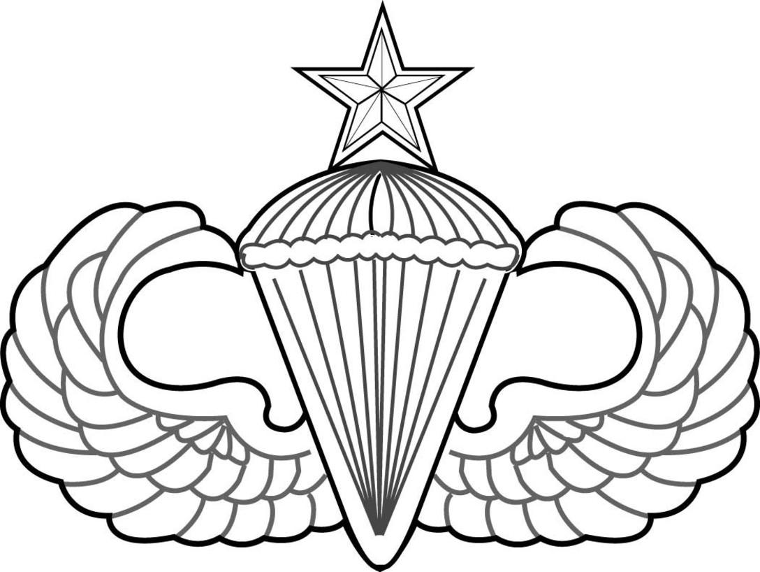 1088x818 senior parachutist badge, senior level