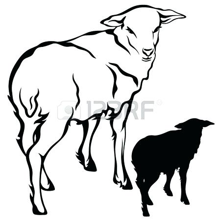 447x450 lamb outline sheep lamb outline template for activity lamb outline