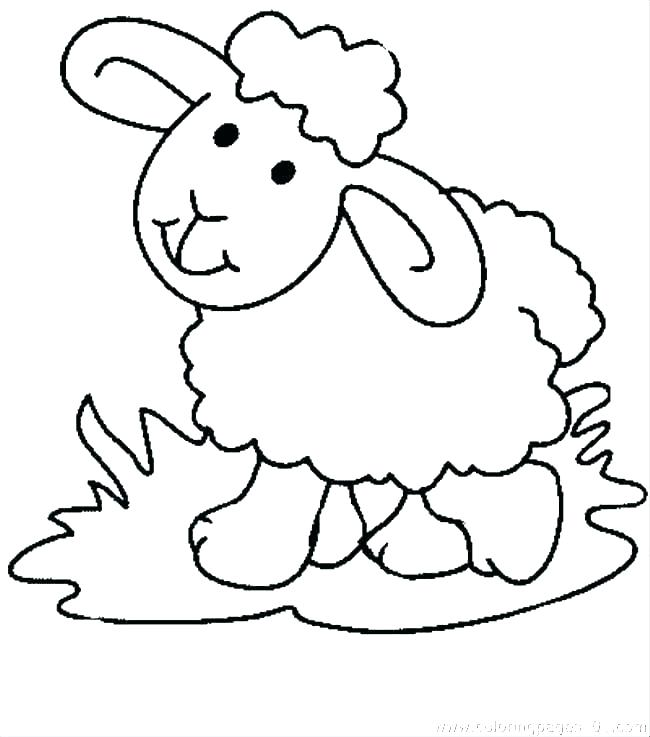 Sheep Outline Drawing | Free download on ClipArtMag