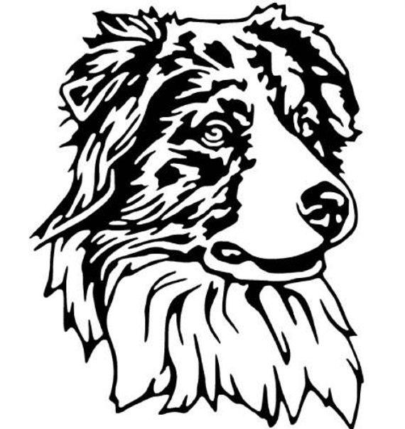 570x605 Australian Shepherd Vinyl Decal Aussie Dog Car Sticker