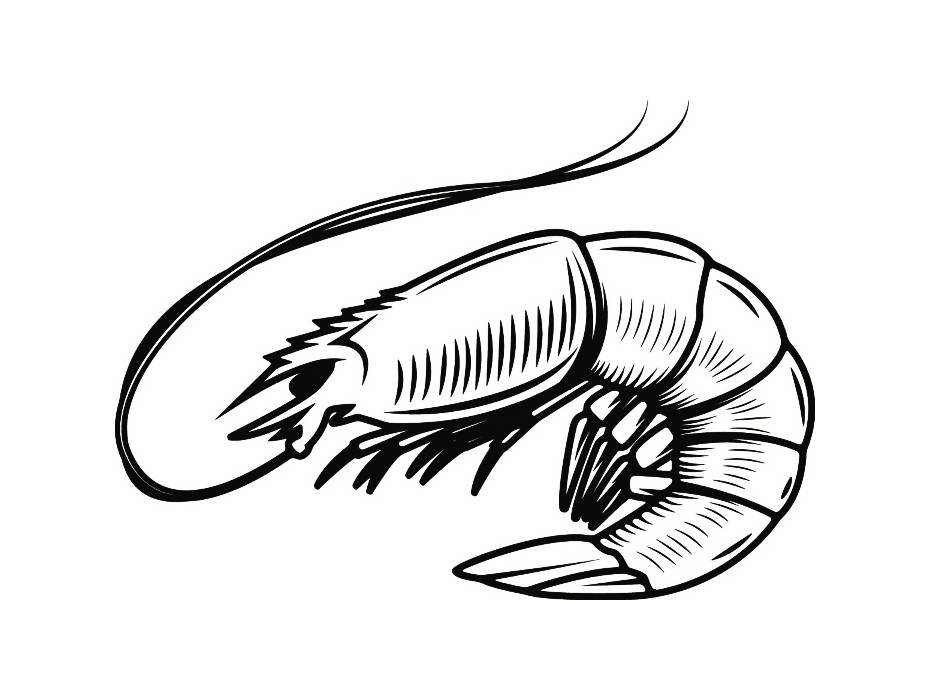 931x700 Shrimp Drawing Tribal For Free Download