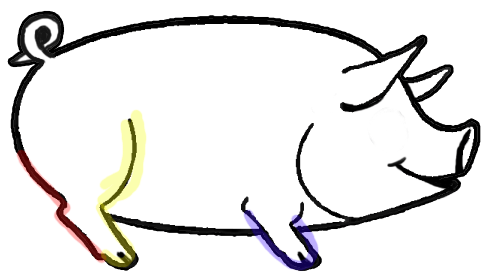 484x275 How To Draw Cartoon Pigs With Easy Step