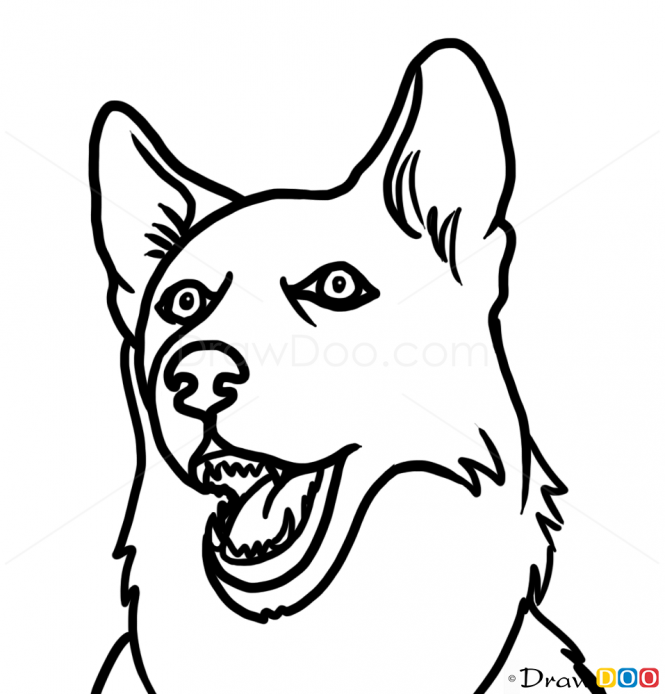 665x694 Terrier Drawing Sideways Dog For Free Download
