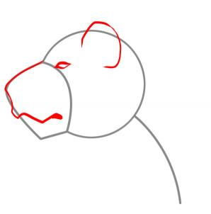 298x302 How To Draw A Lion Face, Step