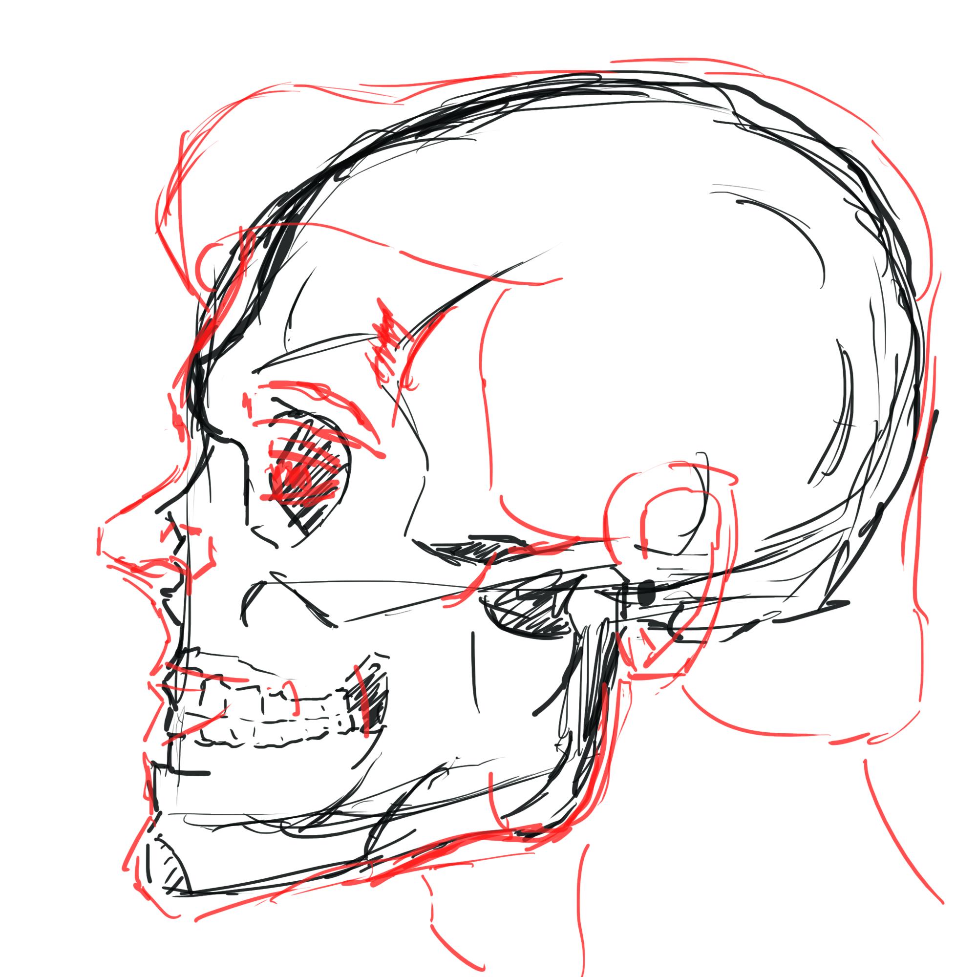 2000x2000 Sideways Face + Skull