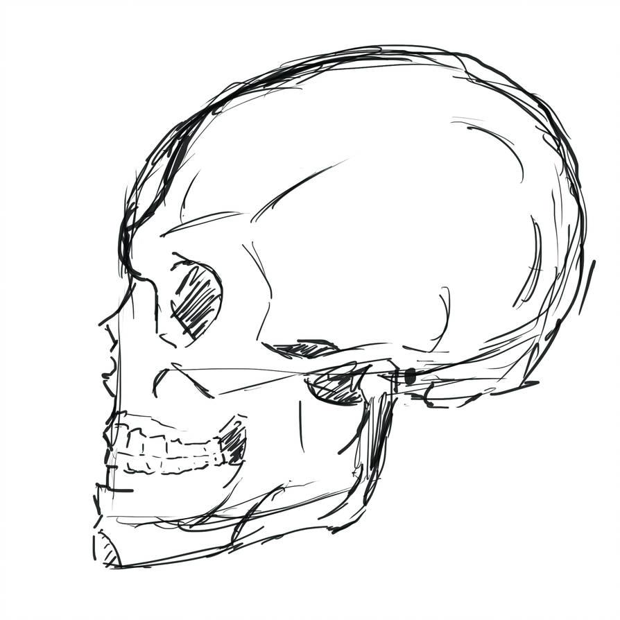 894x894 Face, Sideways Skull