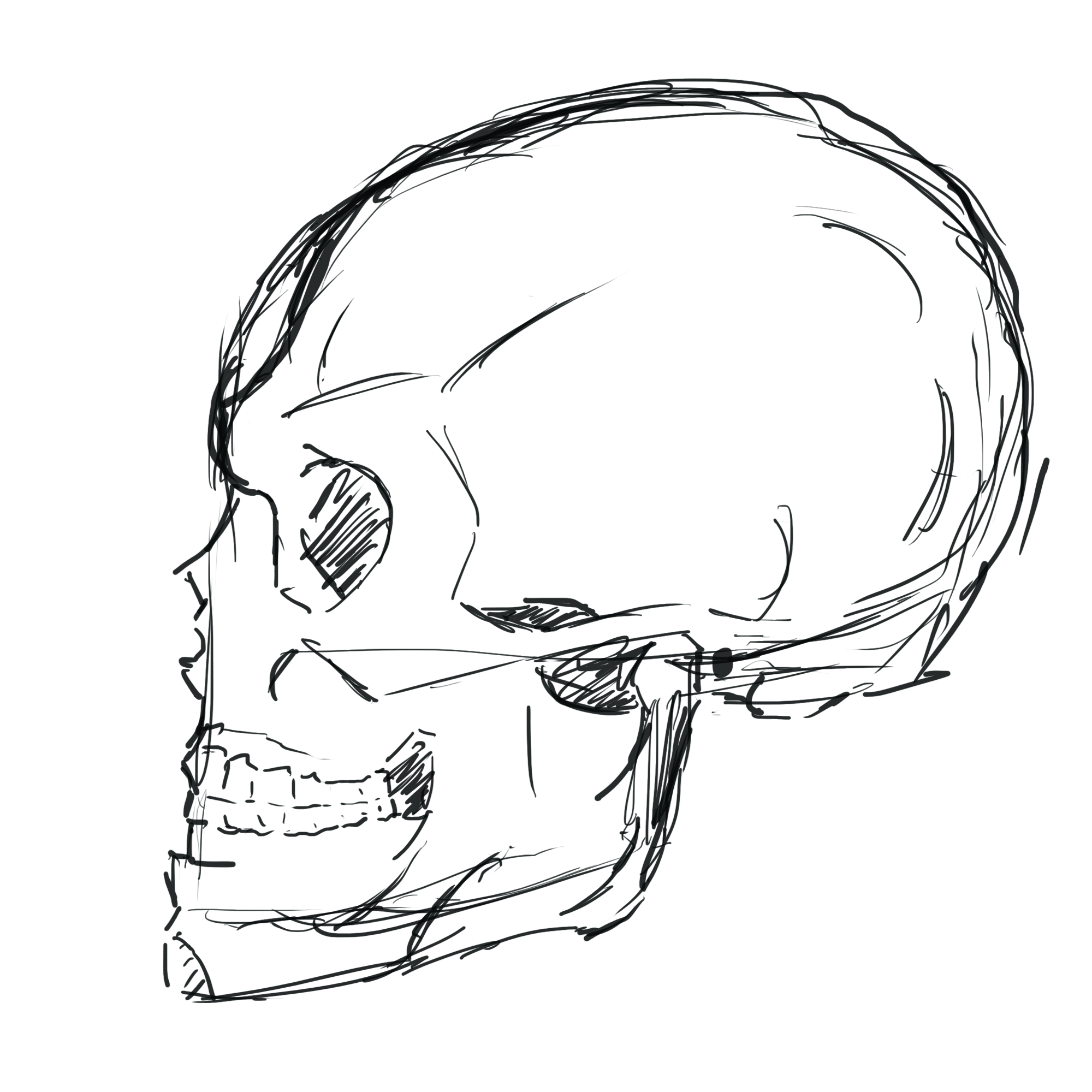 2000x2000 Face, Sideways Skull