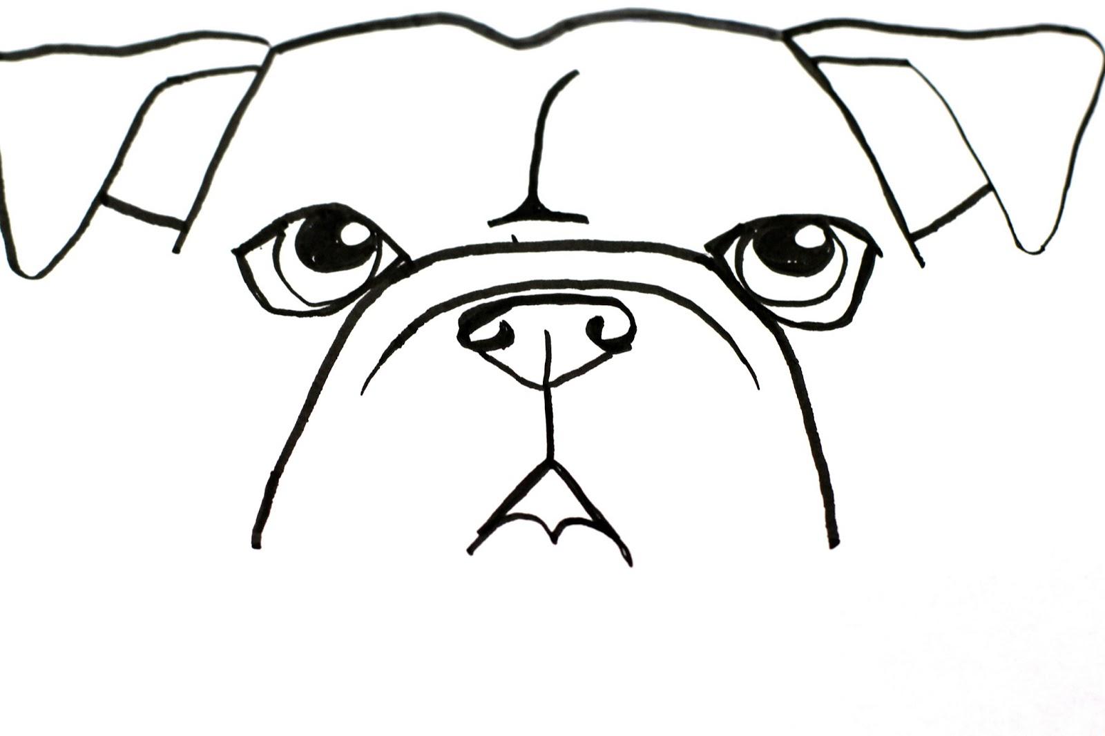 1600x1066 Smart Class Bull Dog Draw A Long