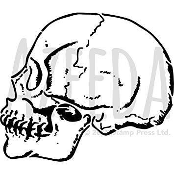 355x355 'sideways Skull' Wall Stencil Template