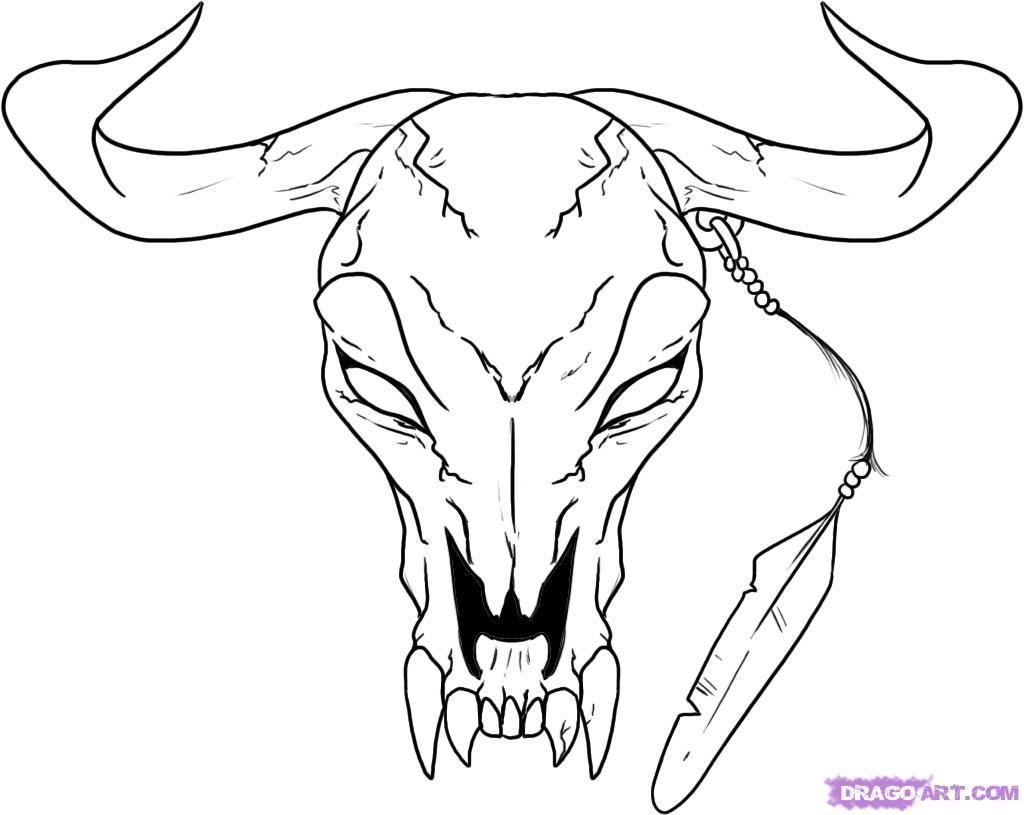 1024x815 Bull Drawing Free Download