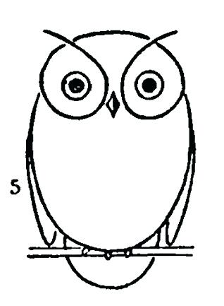 318x433 Easy Owl Drawings Owl Drawing Easy Owl Drawings For Kids Of Simple