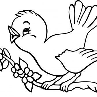 336x336 How To Draw A Bird For Child Simple Kids Eye Beak Cage I Fertility