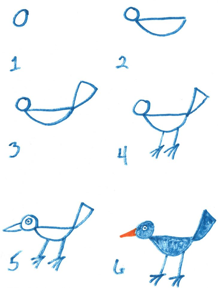 728x962 How To Draw A Bird In Photoshop Easy Wikihow For Kids On Branch