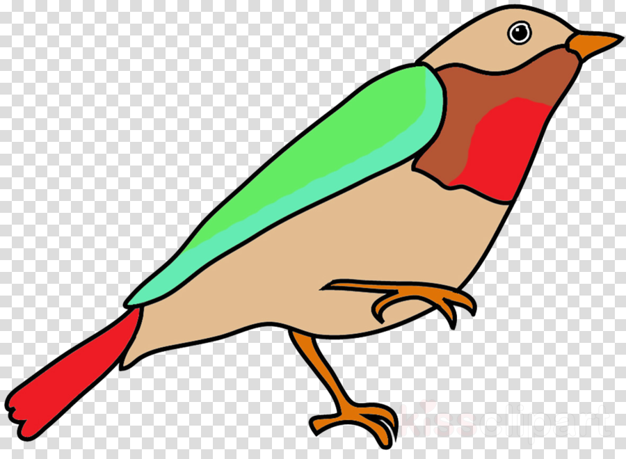 900x660 Simple Bird Drawings