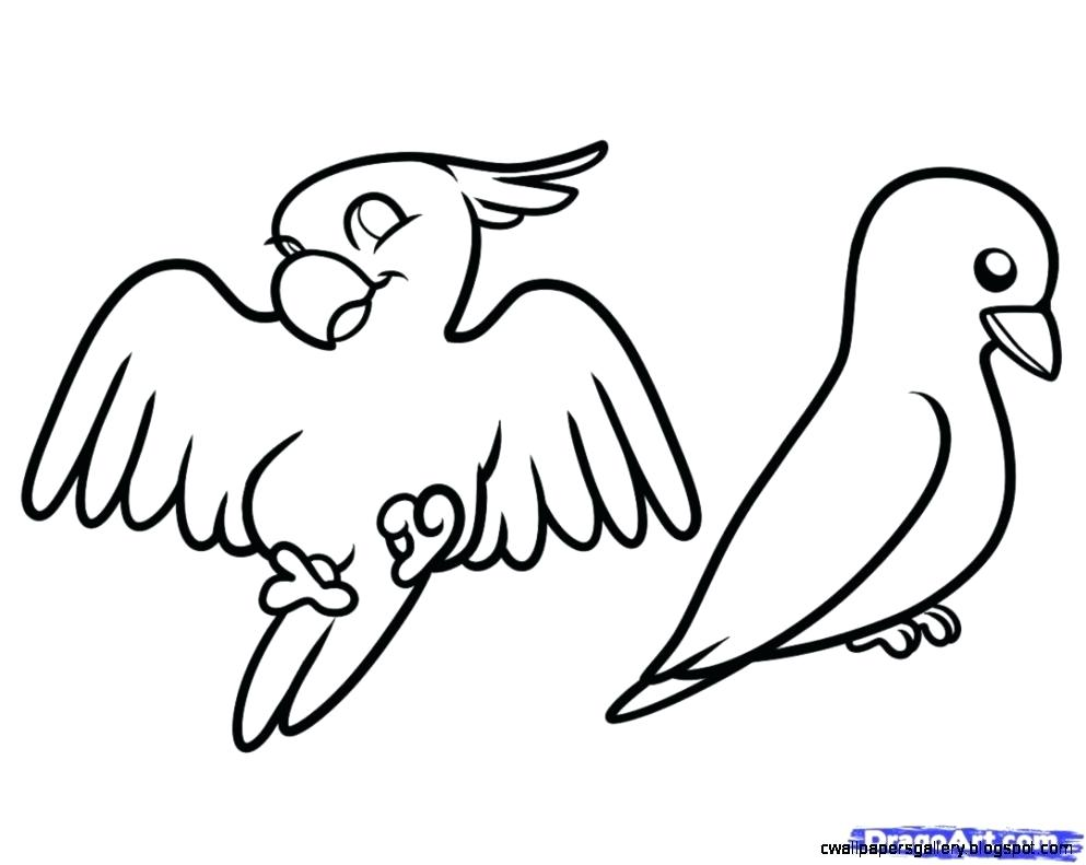 993x791 simple parrot drawing parrot icons set simple line drawing parrot