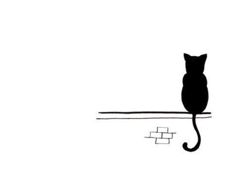 500x357 Cat Drawing