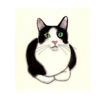 350x331 Huge Collection Of 'black And White Cat Drawing' Download More