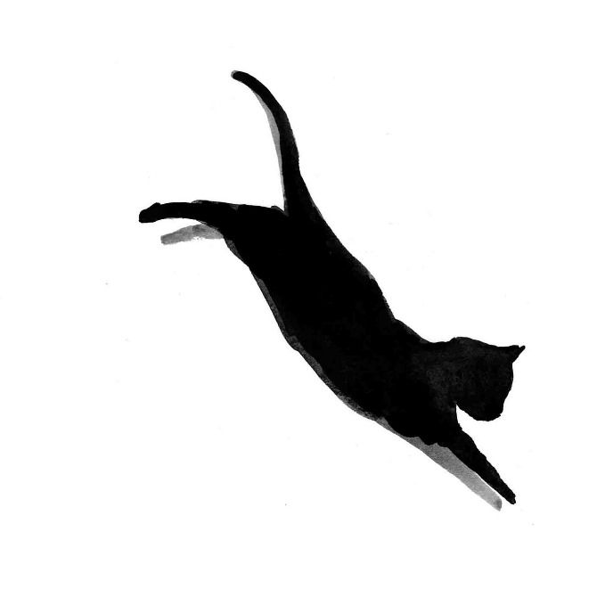 670x670 Sushi The Black Cat Hallows Eve Cat Art, Cats