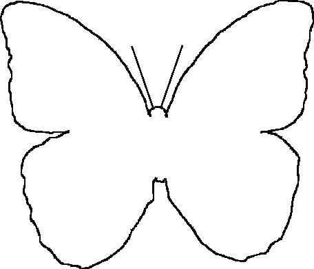 456x391 simple butterfly outline simple butterfly simple butterfly