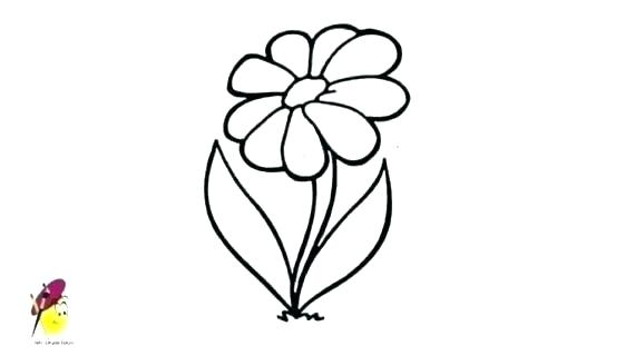 570x320 Flower Easy Drawing How To Draw A Flower Easy Step Lotus Flower