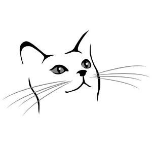 300x300 Simple Drawing Of A Cat Face I Want To Do This But In Real Detail
