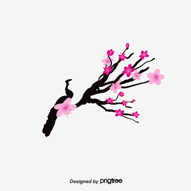 Simple Cherry Blossom Drawing