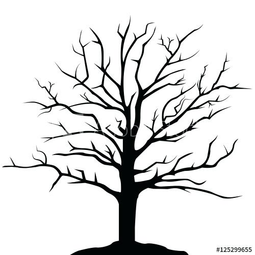 500x500 Simple Drawing Of A Tree How To Draw A Tree Tutorial Simple Tree