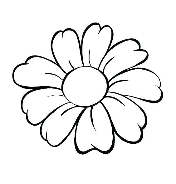 564x589 Simple Drawing Of Flower How To Draw And Shade Daisy Simple Flower