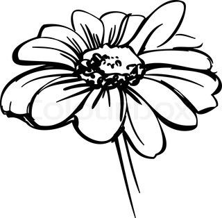 320x314 Vector Of 'a Sketch Wild Flower Resembling A Daisy' Card Making