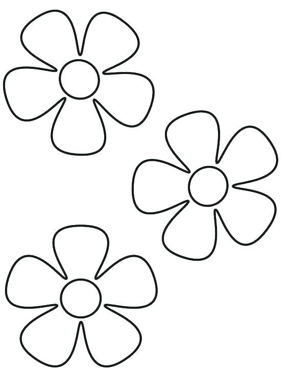 564x729 Easy Hawaiian Flowers To Draw