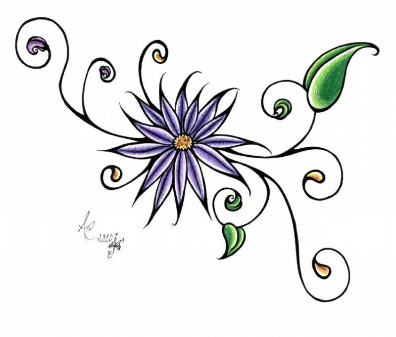 800x682 Daisy Tattoos And Designs