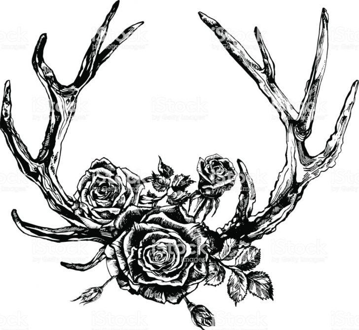 728x670 Drawing Designs Antler Cartoon Simple Small Deer Flowers Iydunetwork