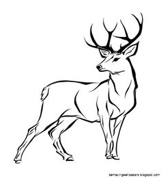 236x260 Collection Of 'female Deer Drawing' Download More Than Images