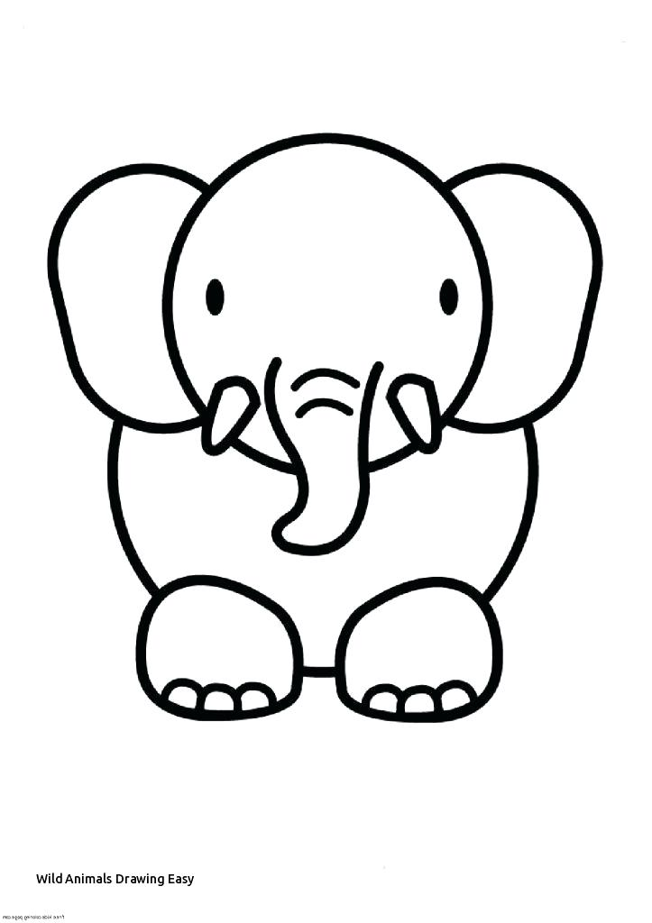 723x1024 easy animals drawing easy animal coloring pages cute cute animal