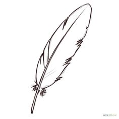 Simple Feather Drawing