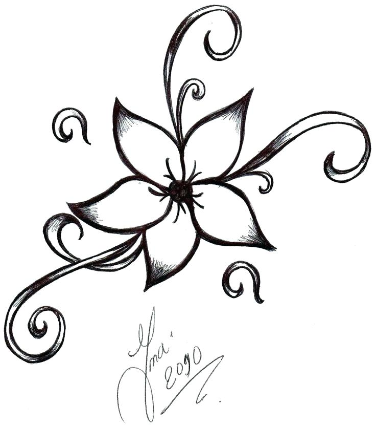 736x830 How To Draw Simple Flower Lettering Line Drawing Motivation How