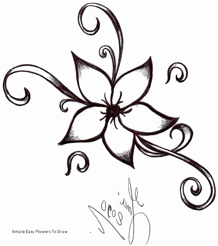736x830 Photos Of Simple Flowers Drawing Coloring Pages Collection