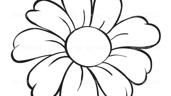 570x320 Simple Flower Drawings Flower Line Drawing