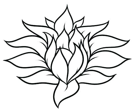 474x382 Simple Flower To Draw Simple Flower Drawing Sketch Images