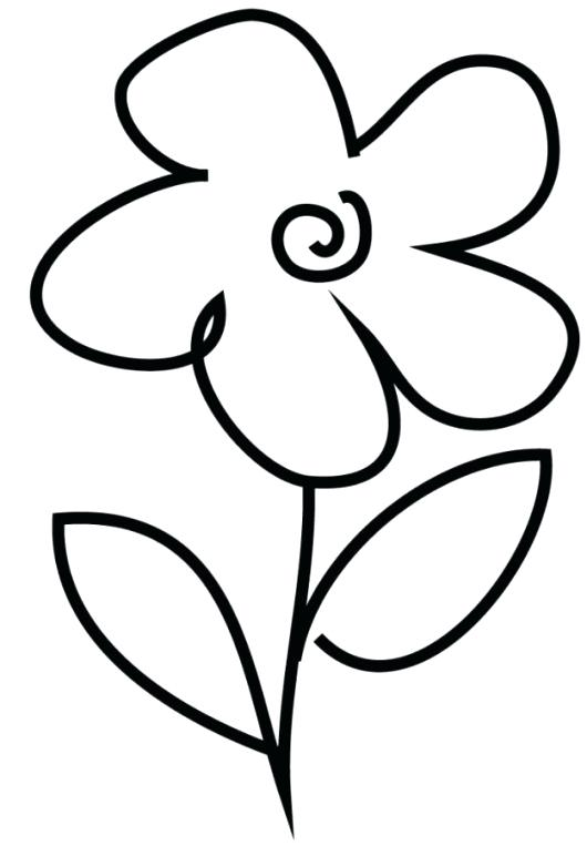 530x763 Simple Flowers Drawings Simple Line Drawings Flowers