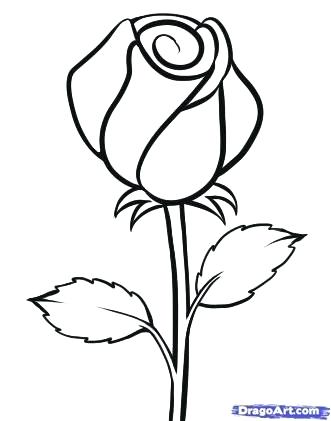 331x421 Simple Rose Drawing Drawing Step