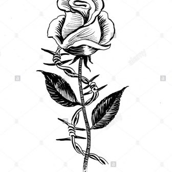 336x336 Black And White Flowers Line Drawing Simple Rose Skull Free Tattoo