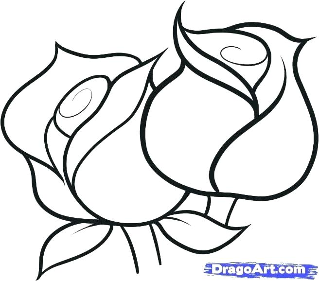 656x578 Drawing Of A Simple Rose Simple Rose Line Drawing At Free
