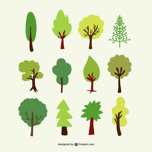 626x626 Forest Trees Vector Set Vynil Wall Vector Tree