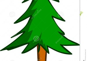 300x210 Simple Pine Tree Drawing Simple Pine Tree Drawing How To Draw