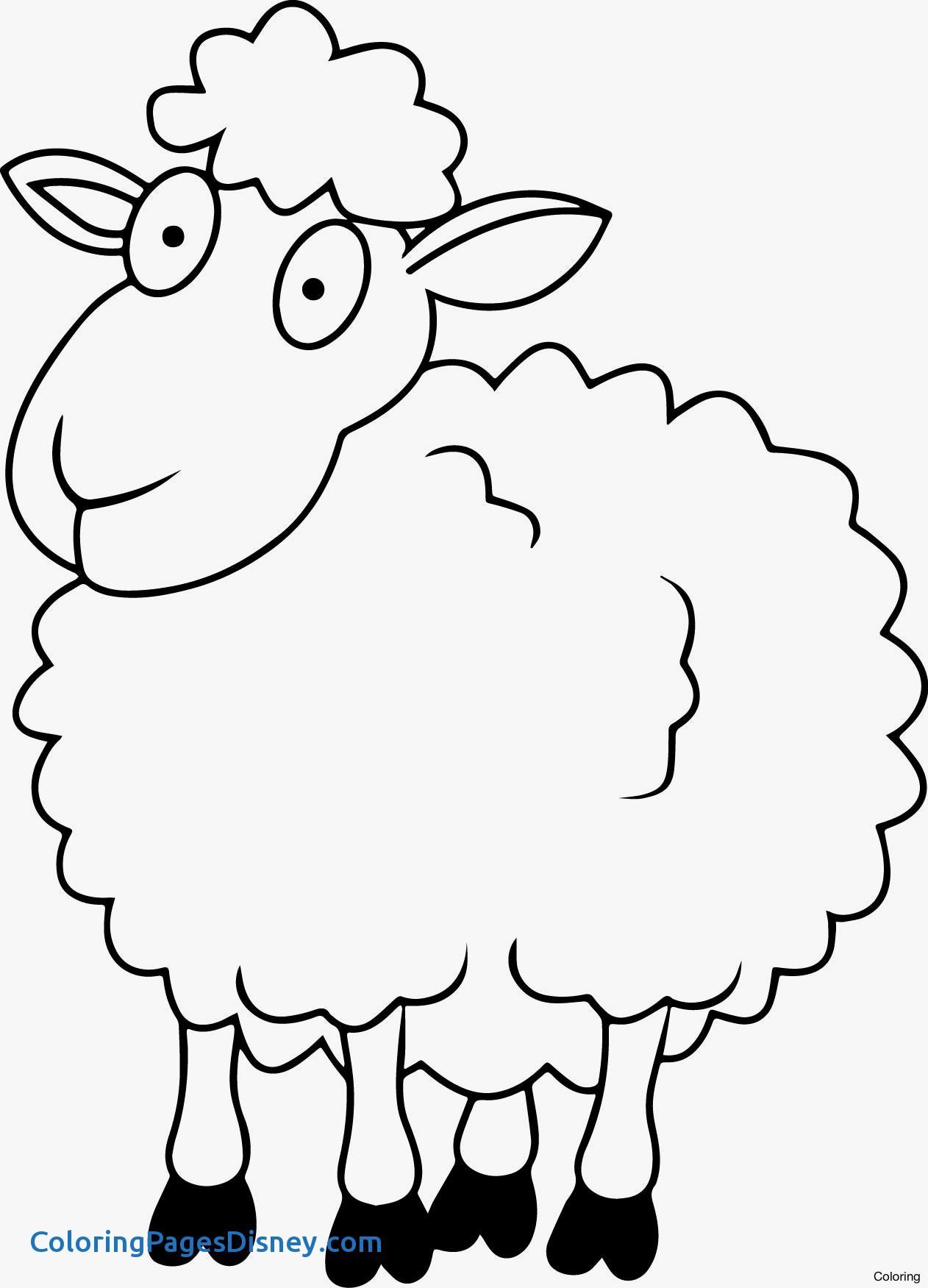 Simple Lamb Drawing