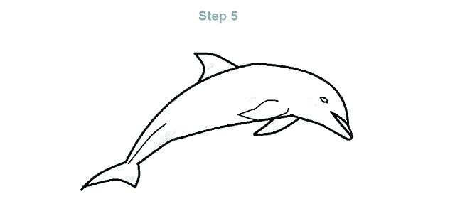 640x280 Simple Dolphin Drawing How To Draw A Cartoon Dolphin Simple Line